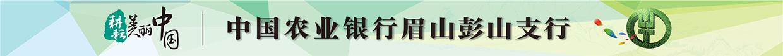 中国农业银行股份有限公司眉山彭山支行